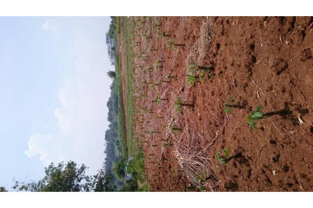 Rp735mily Tanah Dijual