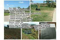 Tanah Luas Strategis di Lembang