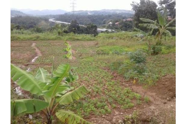 Rp4,33mily Tanah Dijual