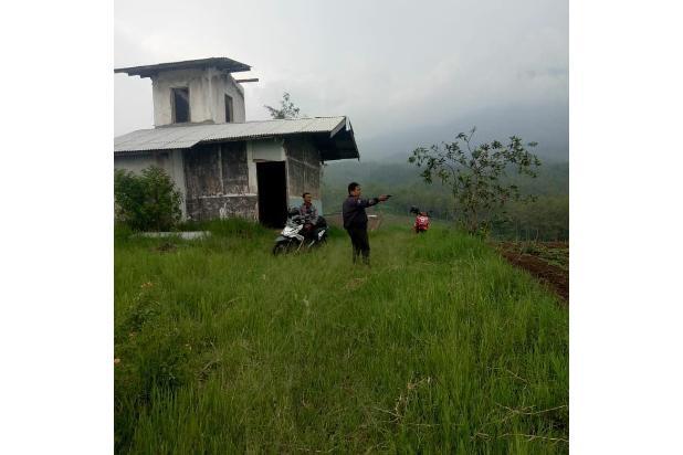 Rp105mily Tanah Dijual