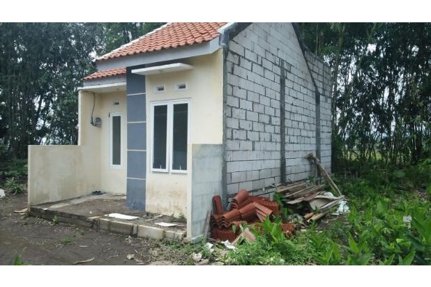Dijual Rumah Murah Malang 16510166