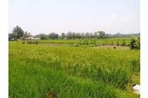 Tanah-Sukabumi-1