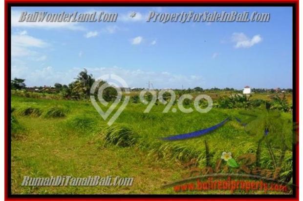 View Sawah, lingkungan villa 1.000 m2 di Canggu Kayutulang  3154352