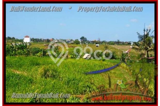 View Sawah, lingkungan villa 1.000 m2 di Canggu Kayutulang  3154353