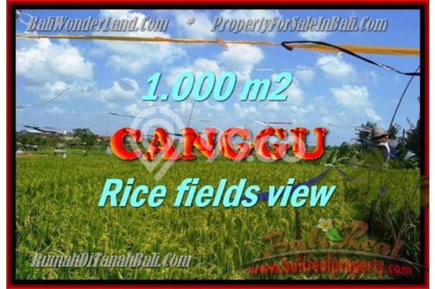 View Sawah, lingkungan villa 1.000 m2 di Canggu Kayutulang  3154355