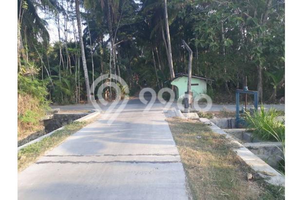 Tanah Kapling Murah Konsep Perumahan di Wates 13696979