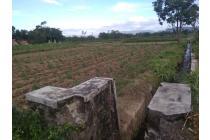 Taman Randu Asri Prambanan, 63 Proyek Pilihan, POTONGAN 25%