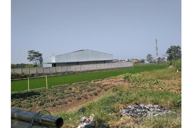 Rp240mily Tanah Dijual