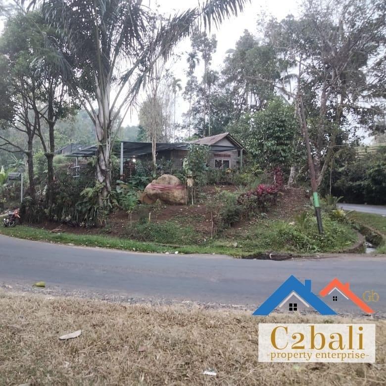 Tanah bagus untuk investasi 20 are di Tabanan, Bali