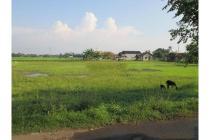 Dijual Tanah Lokasi Strategis di Pabuaran Bogor