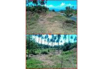 Tanah Kawanua Manado
