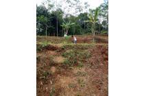 Dijual Tanah Murah Strategis di Cisarua Bogor