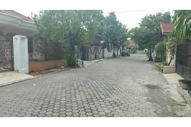 Rmh terawat Tmn pondok indah wiyung surabaya barat 15424033