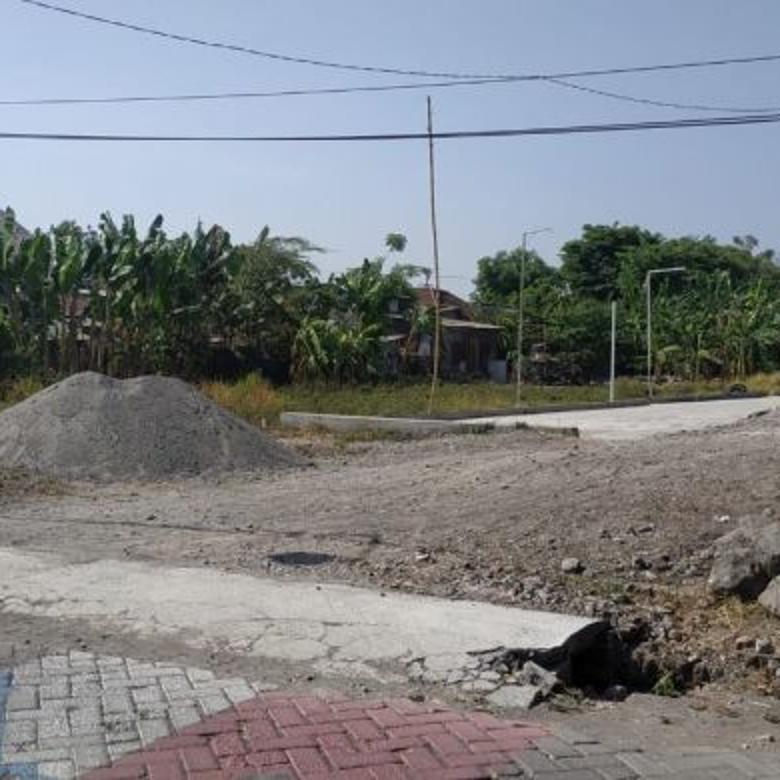 Tanah-Sidoarjo-3