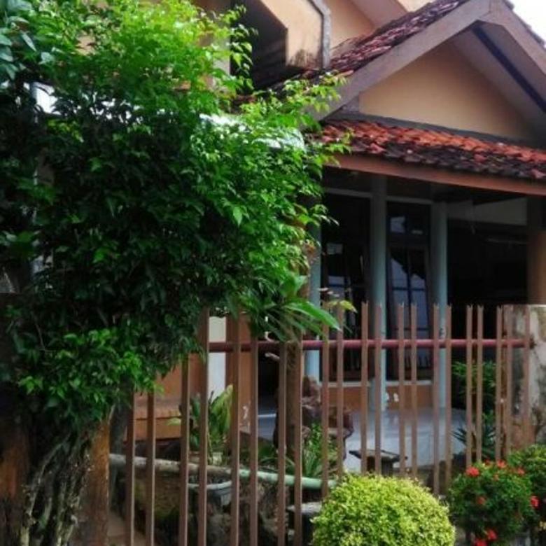 Dikontrakkan Rumah Asri Tenang Lokasi Strategis Di Pamekasan