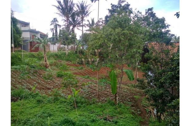 Rp11,2mily Tanah Dijual