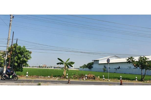 Rp7,14mily Tanah Dijual