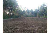 Kavling di Wates Kota, Cicilan 12 X Tanpa Bunga : Tepi Jalan Aspal