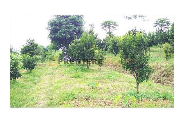Rp7,9mily Tanah Dijual