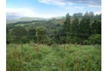 Tanah murah meriah di Cikanyere, Puncak