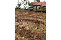 Tanah-Bandung Barat-5