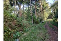 Tanah 4000m dijual di Malang, Cocok utk perumahan/perkebunan/pertanian