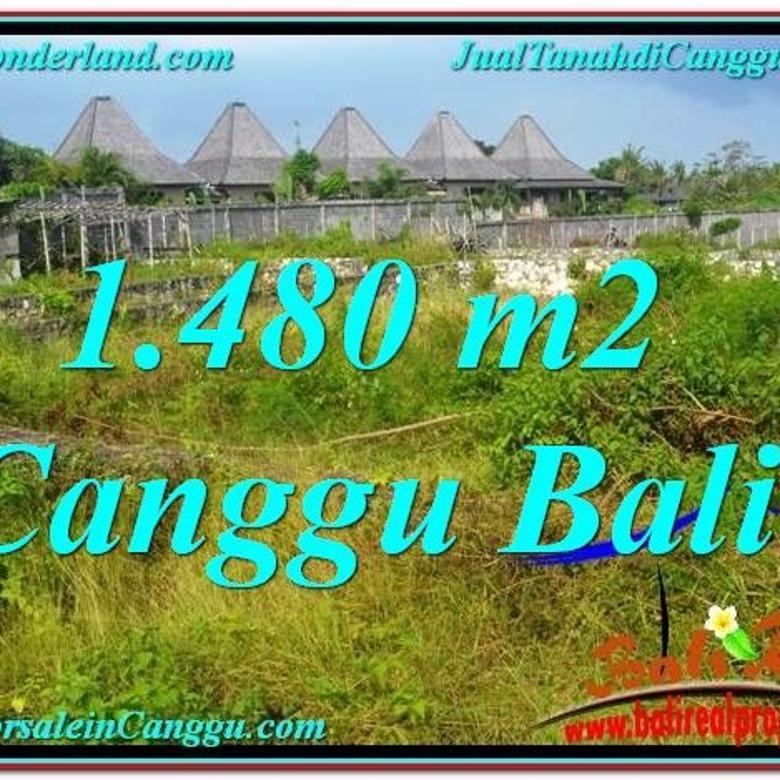 Tanah View sawah lingkungan villa 1,480 m2 di Canggu Pererenan CGX212