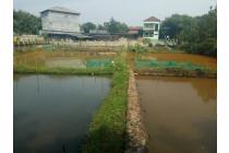 Ikan Koi Farm, Rumah Walet dan Villa
