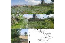 Tanah Padaasih Permana Pesona Alam Bandung Barat Jual