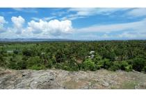 Land forsale in East Sumba