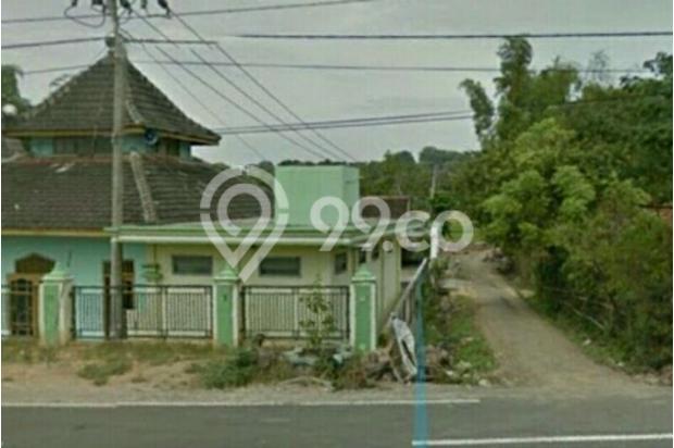 investasi tanah murah selatan jl pantura Tuban 16578329