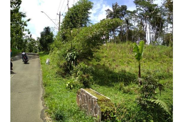 Tanah dijual di baturaden purwokerto 15558742