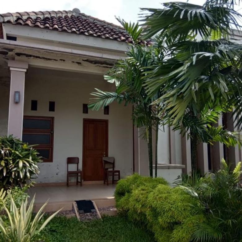 Rumah Minimalis, Asri, Penuh Tanaman Hijau d Pajang Solo
