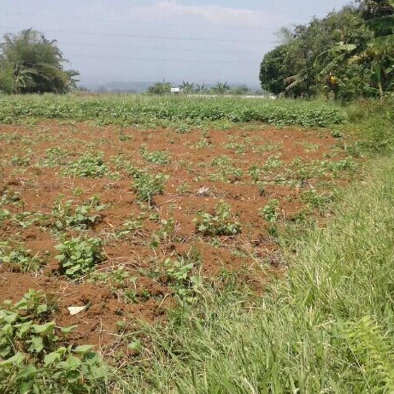 lahan pinggir jalan di ciampea Bogor Barat