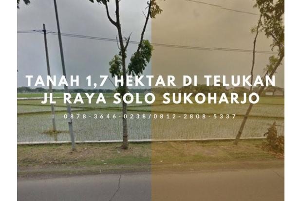 BISA DIAMBIL MIN 1 HEKTAR, 0878-3646-0238, Harga Tanah di Telukan Jl Raya S 14907413