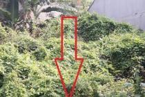 Kavling Tanah di Jalan Cilandak, Dekat Akses Tol JORR, SHM, LT 180 m2