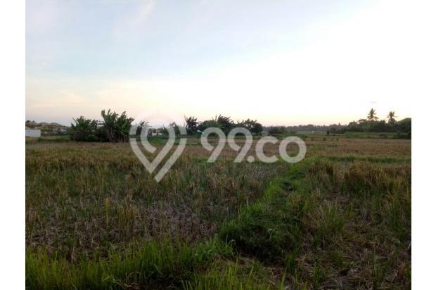 tanah dekat pantai 12398012
