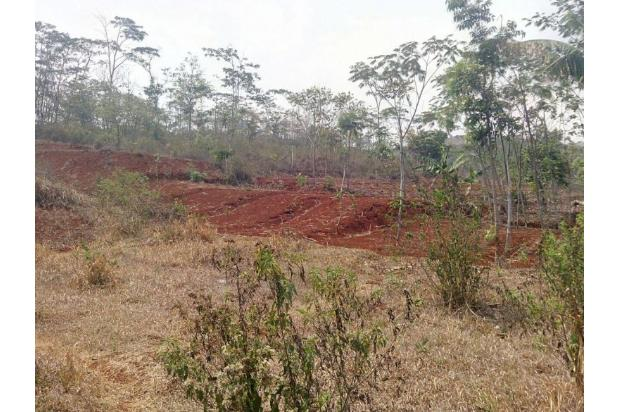 Rp127mily Tanah Dijual