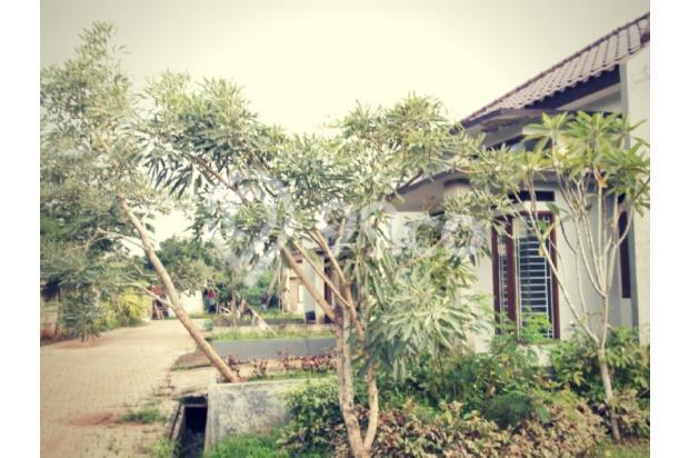 Miliki Rumah KPR Uang Muka 8 JUTA, Lokasi Dekat Sekolah Alam Depok 14316912