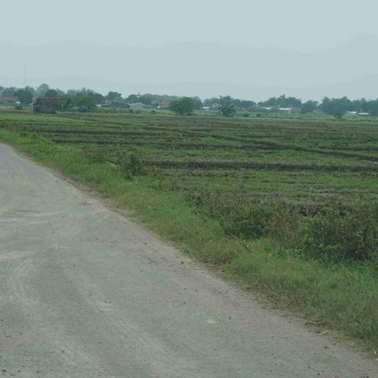 Tanah Bernilai Investasi Tinggi Tepat di Depan Kawasan Industri Cirebon Timur