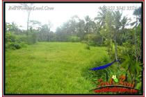 Affordable 6,700 sqm in Ubud Tegalalang