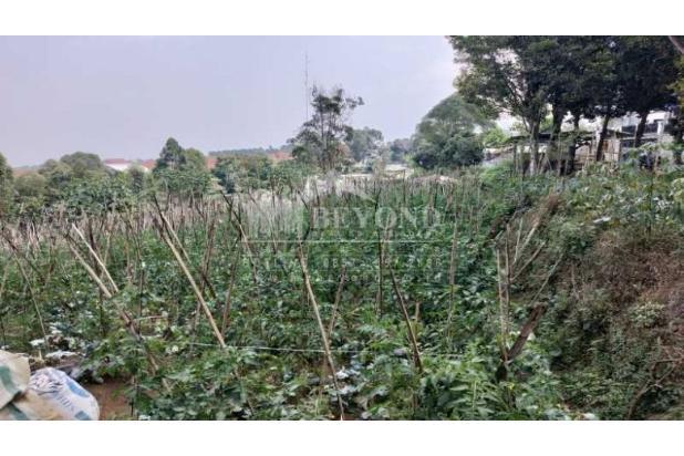 Rp3,8mily Tanah Dijual