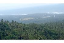 Tanah 4 Hektar Dijual Di Tabanan Bali