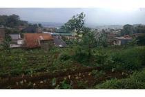 Tanah-Bandung-12