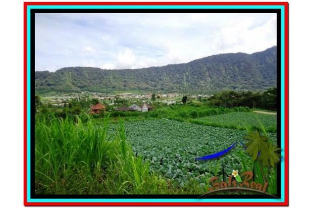 Fantastic, 12.500 m2 view danau buyan dan gunung di Tabanan Bedugul  3873660