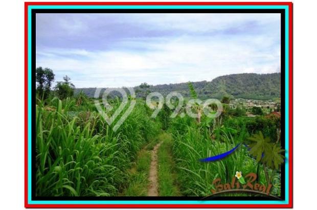 Fantastic, 12.500 m2 view danau buyan dan gunung di Tabanan Bedugul  3873670