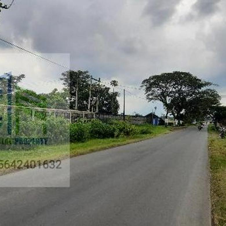 Tanah pekarangan kawasan pergudangan di Nogosari Boyolali