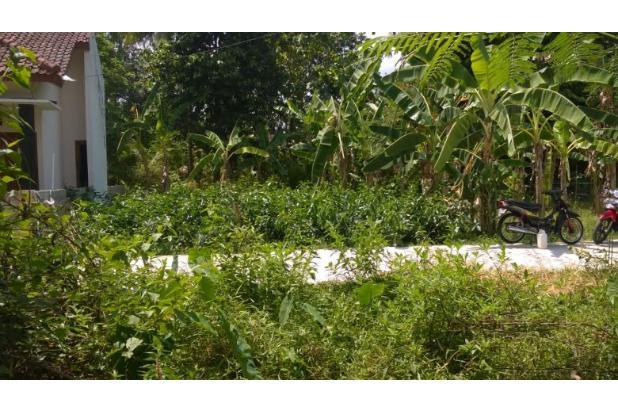 Beli Tanah 119 M2 di Pleret, Bantul, Sila Bangun Sendiri 13425687