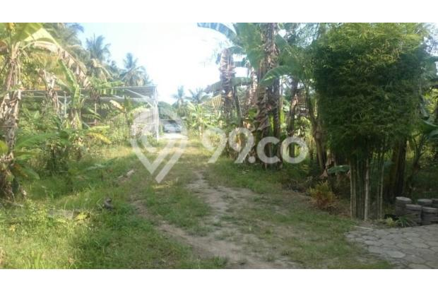 Beli Tanah 119 M2 di Pleret, Bantul, Sila Bangun Sendiri 13425691