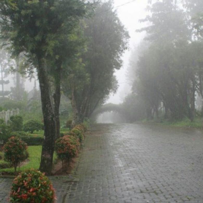 Vila-Cianjur-4